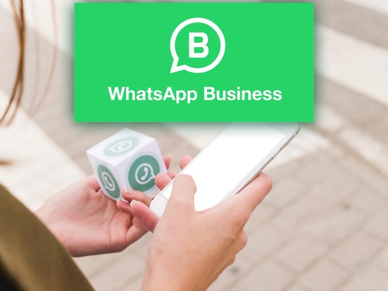 WhatsApp Business per le attività